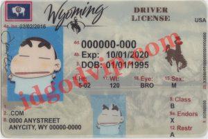 Wyoming-fake-id